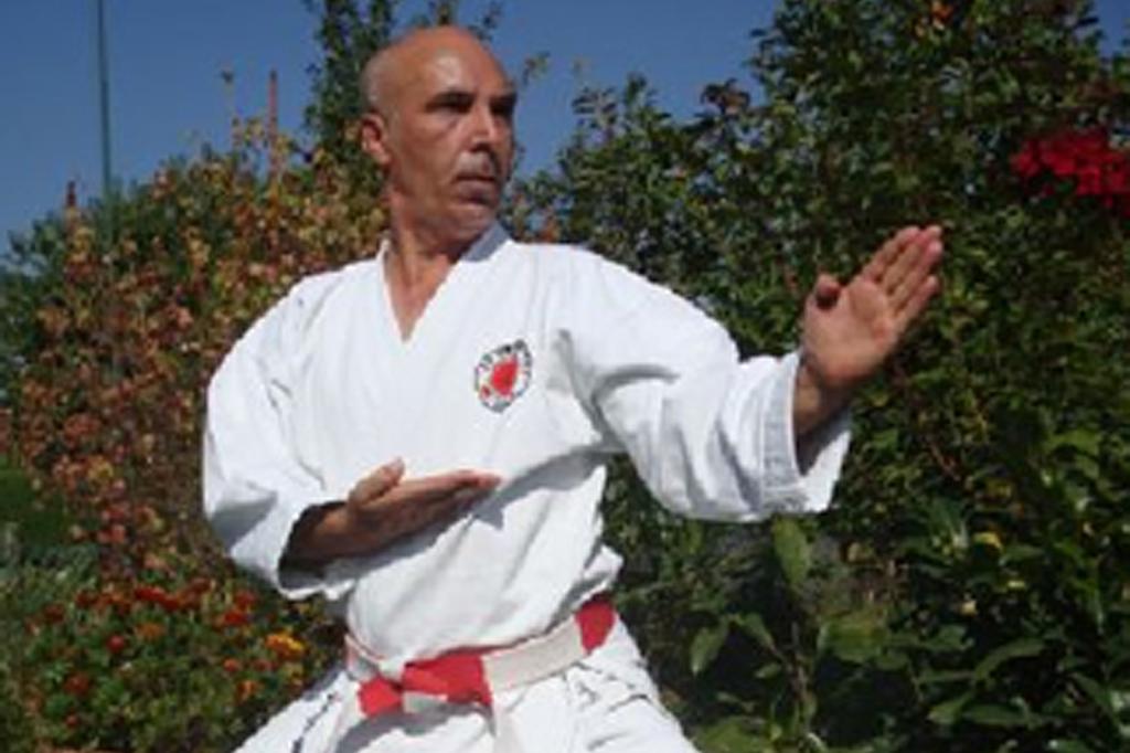 International Shotokan Karate-do Seminar in Wil
