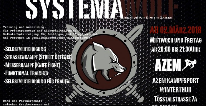 Systema im Wing Thai Gym-Center in Winterthur